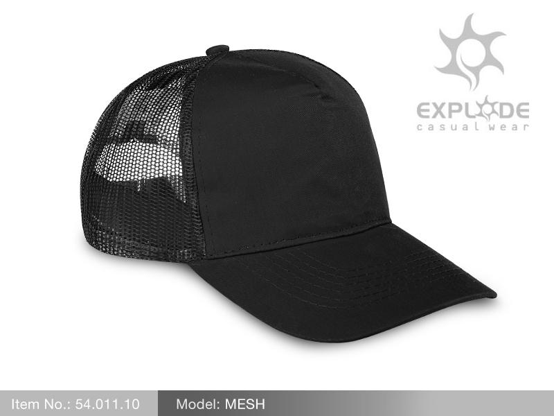 mesh1