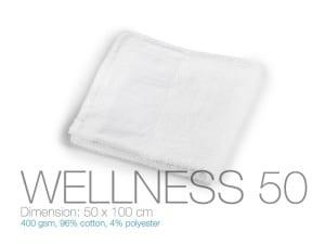 reklamni materijal-peskiri-WELLNESS 50-boja bela